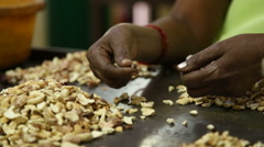 Women picking and sorting cashew nuts with their hands. Stock Footage
