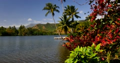 Wailua River Stock Footage