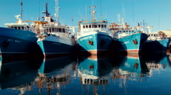 Boats Docked in a Row at Fremantle Fishing Boat Harbour - stock footage