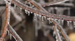 Frozen rain Stock Footage