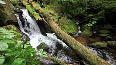 Dartmoor stream - stock footage