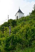 Piramida Hill in Maribor - stock photo