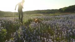 Dog Running in Slow Motion through a Field of Flowers at Sunset Stock Footage