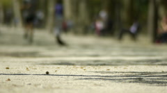 People at the park. Paris, France Stock Footage