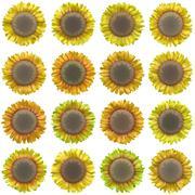 Bloom set generated texture Stock Illustration