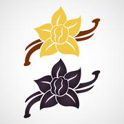 Vanilla flower and vanilla pods vector logo - stock illustration