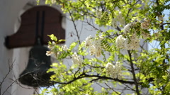 Flowers in tree with typical andalusian bell tower at background Stock Footage