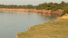 Laungwa River; SOUTH LUANGWA, ZAMBIA- CIRCA May, 2009 Stock Footage