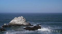 Seal Rock Birds - stock footage