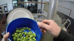 POV brewer pouring hops into copper at micro craft beer brewery Stock Footage