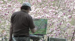 The artist behind mulbarton and draws cherry blossoms sakura Stock Footage