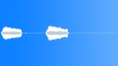 Bird Crow Krah 2 times - sound effect