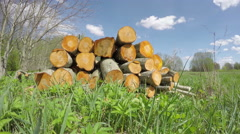Fresh spring firewood stack and clouds motion. Timelapse 4K Stock Footage