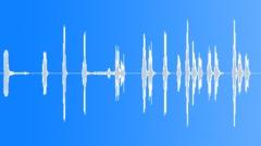 Little Dog Barking 1 Sound Effect