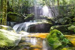 Waterfall with sunbeam in rainforest. Stock Photos