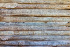 Texture and pattern of old  log - stock photo