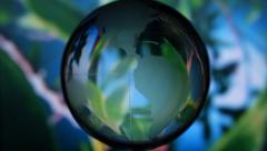 The rotating glass globe on the background of a moving tree Stock Footage
