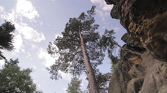 Elbe Sandstone Mountains, Saxon Switzerland, Sächsische Schweiz Stock Footage