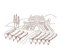 Illustration of vineyard Stock Illustration