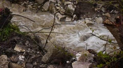 Stock Video Footage of Creek along Road under Bridge 2