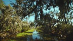 New Orleans, March 2014: Reveal shot of trees and water from a boat - stock footage