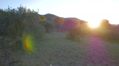 Sunrise over the Spanish mountains Stock Footage
