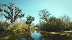 NEW ORLEANS - MARCH 2014, a shot of the Bayou taken from a boat Stock Footage