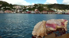 Grenada island Caribbean Sea 047 giant colorful seashells on a boat Stock Footage