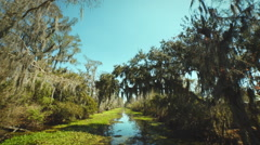 New Orleans, March 2014: Wide angle shot of moving through the Bayou Stock Footage