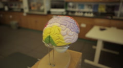Brain 3d model in classroom lab Stock Footage