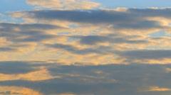 Jumbo jet plane landing in silhouette Stock Footage
