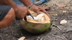 Shelling a coconut close up Stock Footage