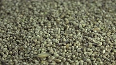 Hemp Seeds (not loopable) Stock Footage
