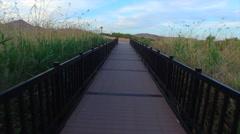 wetlands bridge, Drone shot - stock footage
