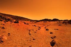 Deserted terrestrial planet - stock photo
