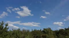 Beautiful clouds deformation under green coniferous forest Stock Footage