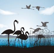 Flamingo on lake shore Stock Illustration