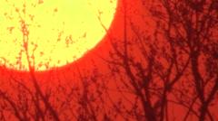 Fireball red sunset on mild spring evening Stock Footage