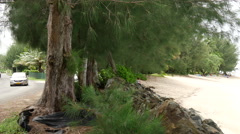Pan from the road to a beach in Rarotonga Cook Islands Stock Footage
