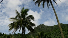 Mountain landscape Rarotonga Cook Islands Stock Footage