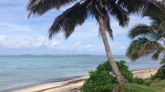 Palmtrees and beach in Rarotonga Cook Islands Stock Footage