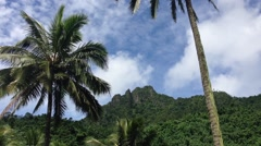 Landscape Rarotonga Cook Islands Stock Footage
