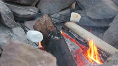 Family roasting marshmallows over hot coals Stock Footage