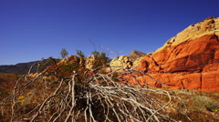 The deserts of Nevada and Arizona - stock footage