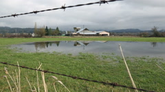 Dolly Shot, Pasture Land Flood Stock Footage