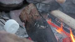 Roasting marshmallows over hot coals Stock Footage