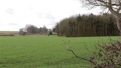 Beautiful English Grass Field Countryside Stock Footage