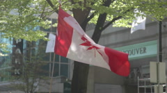 Canadian Weed Flag 420 - Vancouver Stock Footage