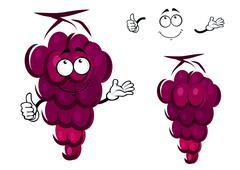 Bunch of fresh ripe purple grapes Stock Illustration