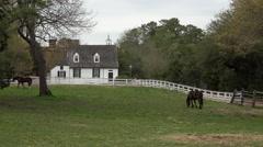 Colonial Williamsburg Virginia historic horse farm 4K 022 Stock Footage